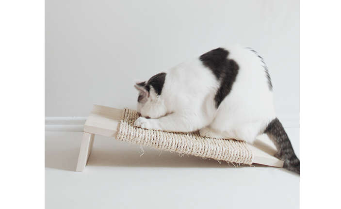 DIY cat scratcher by almost makes perfect.