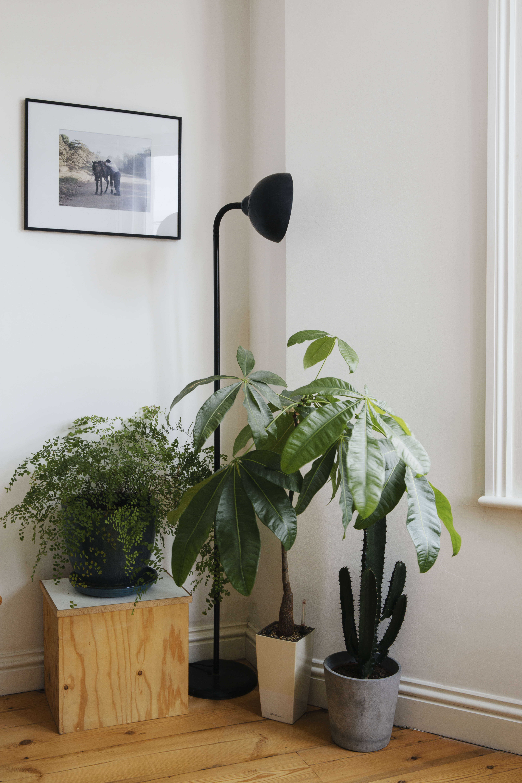 Ondine Ash Brixton Living Room Detail