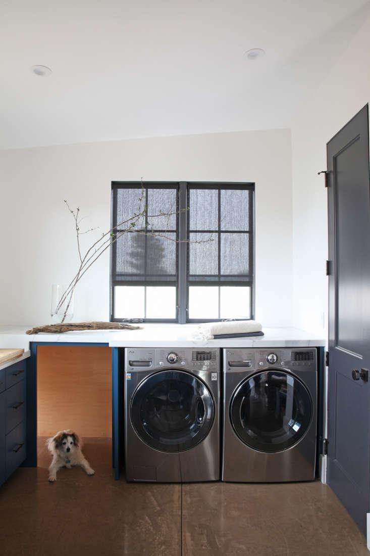 laundry-room-concrete-floors-dog-gray-roller-blinds