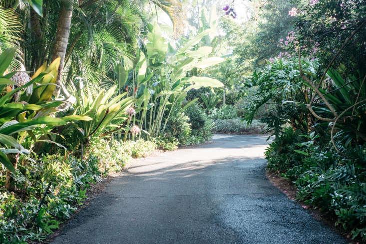 Roberto Sosa Hawaii Beach House Driveway