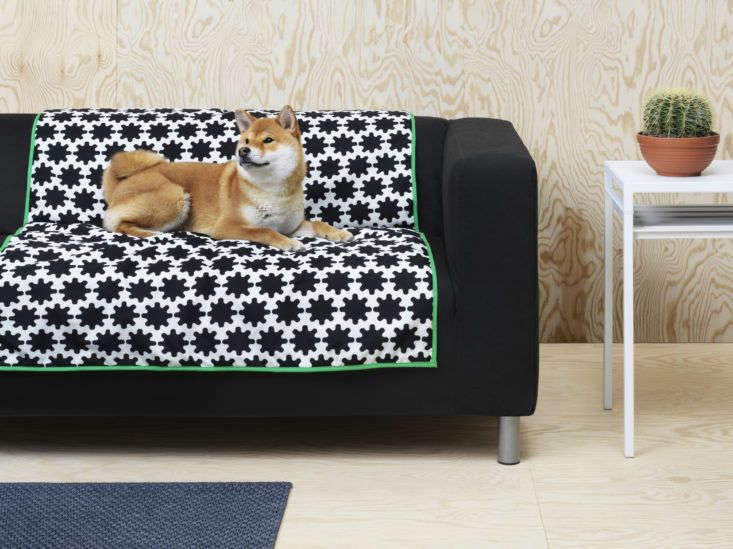 Pet protection for the sofa: the Ikea Lurvig throw blanket.